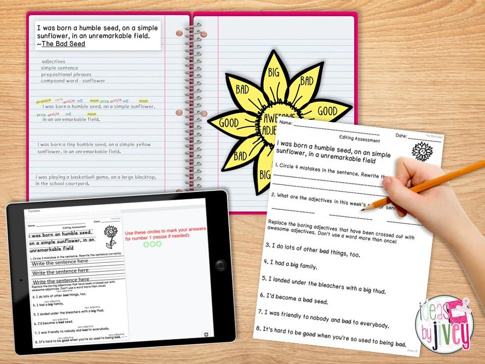 mentor sentence assessment with notebook