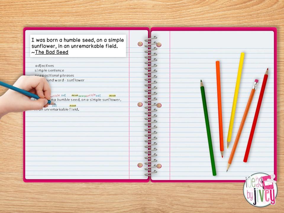 mentor sentence label student notebook